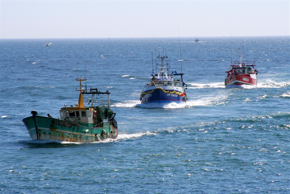 Chimere gv retour au port